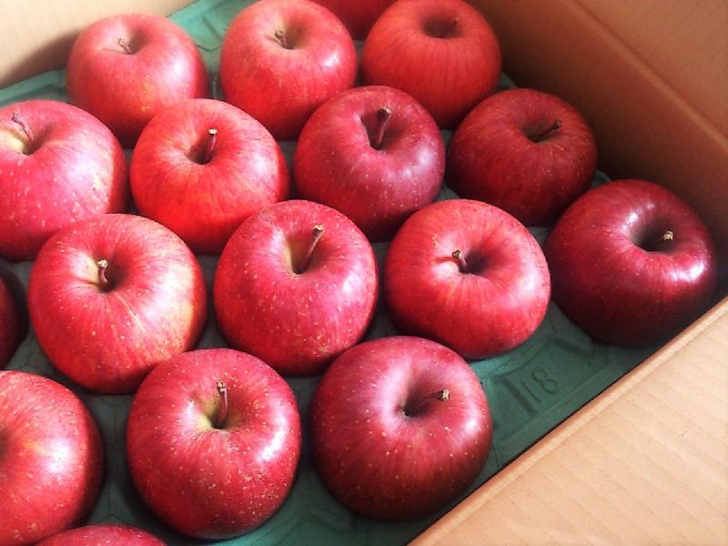 綺麗なりんごの様子